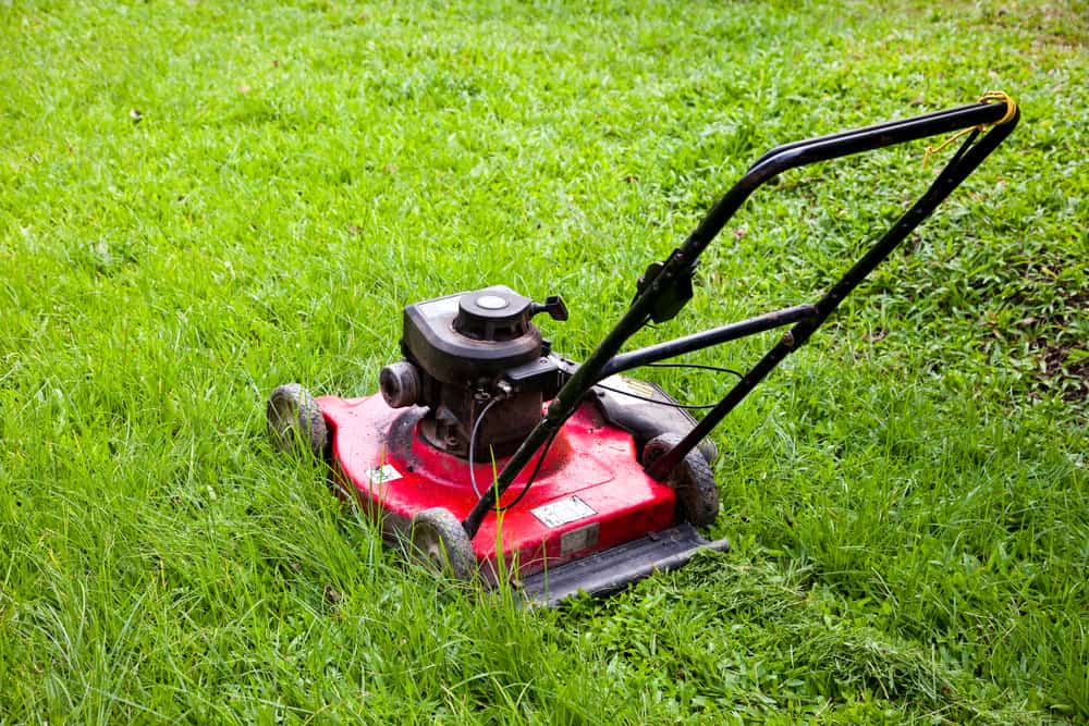 Easy Maintenance Tips to Keep Your Lawn Mower in the Best Condition